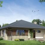 Thiết kế nội thất nhà cấp 4 mái tôn diện tích 12x16m