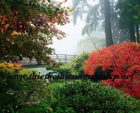sân vườn đẹp nhật bản số 5